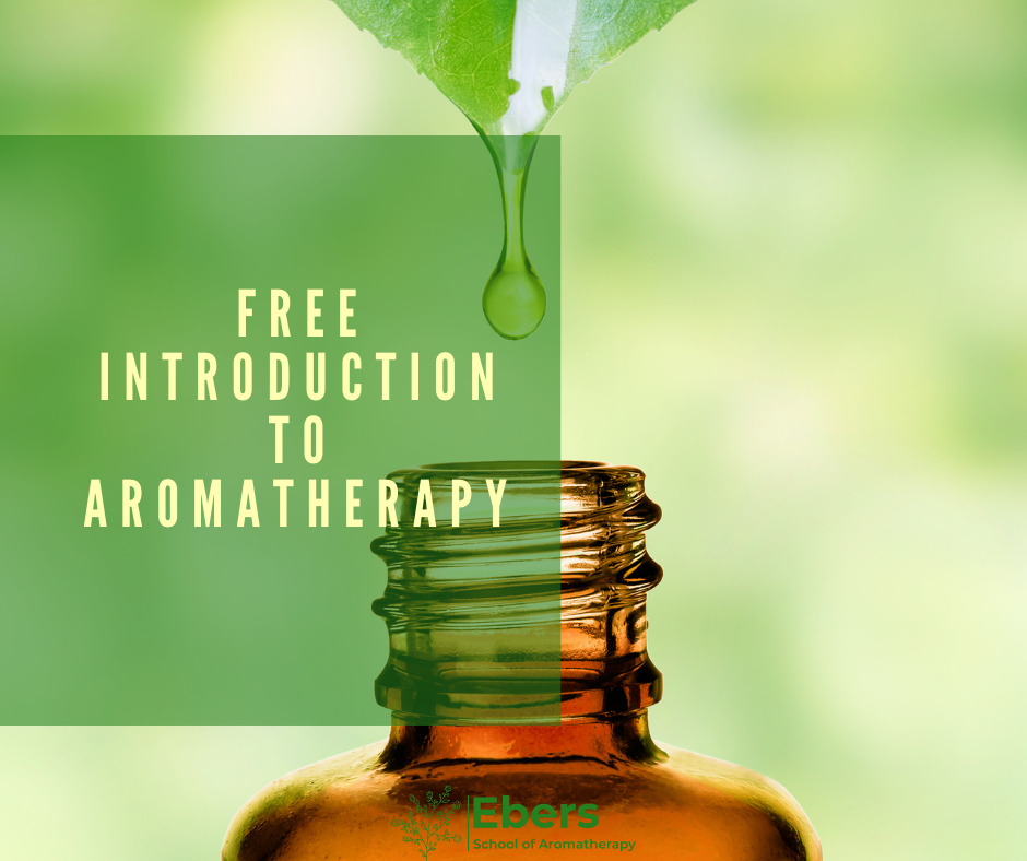 Free Introduction to Aromatherapy